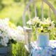 particolare di giardino in estate con sedia e margherite