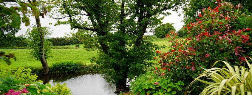 sistemazione giardini bonus verde